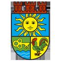 Социални услуги в община Костинброд