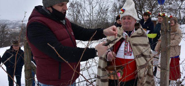 """Днес почетоха Св. Трифон Зарезан, празник на лозарите в местност """"Батил"""", с. Драговищица"""